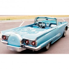 1958-1960 Ford Thunderbird Continental Kit, Hardtop Or Convertible